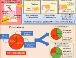Grafico abstract: Sindrome Sistematica da Allergia al Nickel